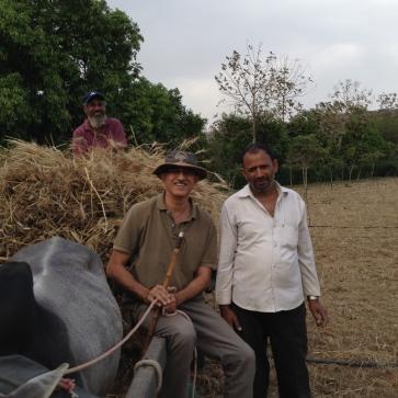 खेती धर्म है केवल व्यवसाय नहीं